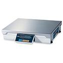 CAS PD-II 60lb Scale